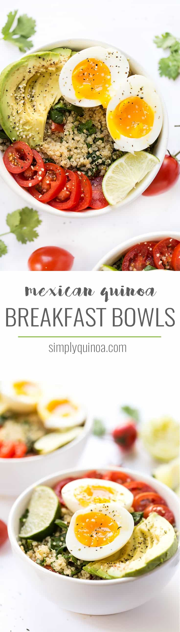 These Mexican Quinoa Breakfast Bowls are the perfect way to start your day! Protein-packed, with creamy avocado, cilantro-lime quinoa and soft boiled eggs!