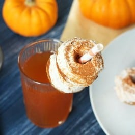 Mini Gluten-Free Pumpkin Donuts