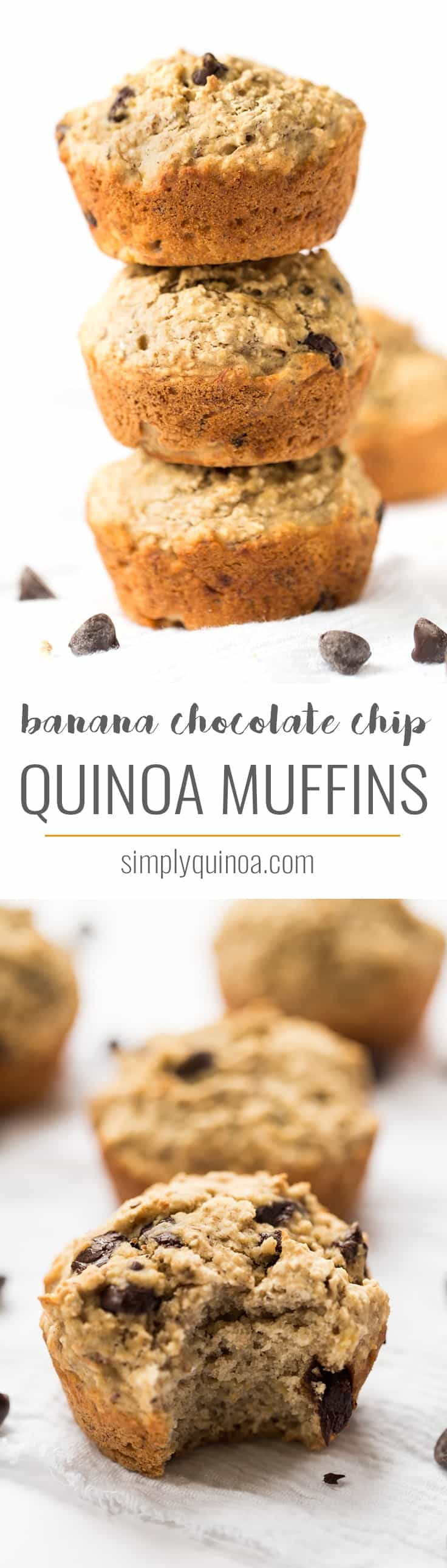 Perfectly soft and tender, these skinny banana chocolate chip muffins are naturally gluten-free and vegan, studded with dark chocolate chips and sweetened with banana!