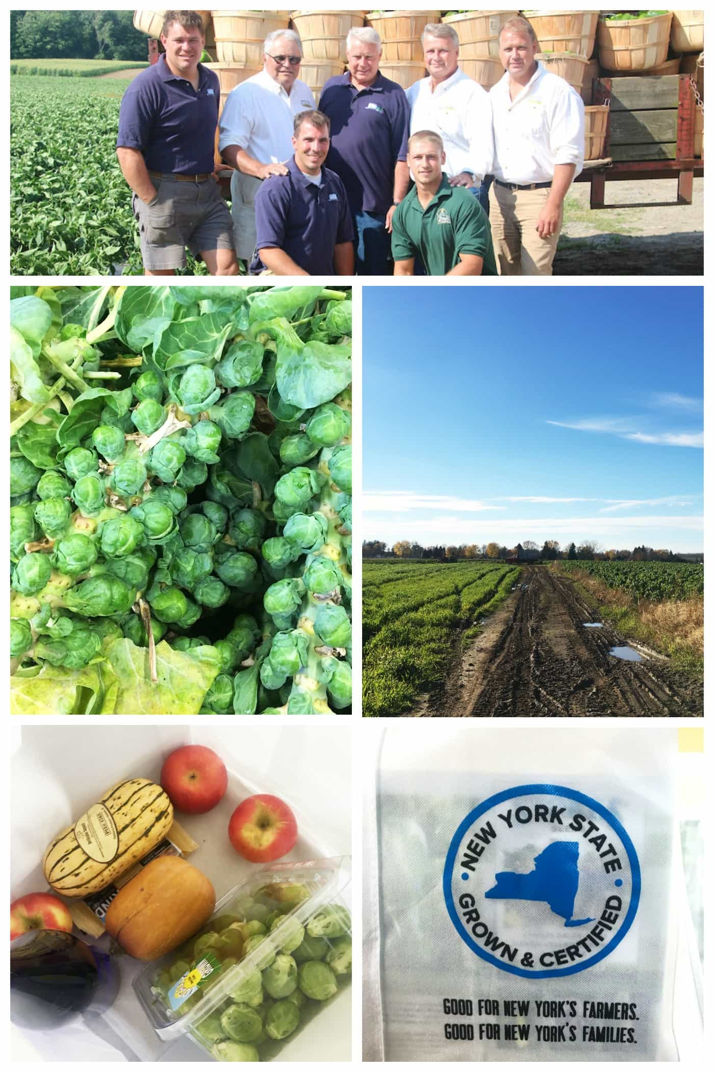 Touring the Amos Zittel & Sons farm in Eden, NY