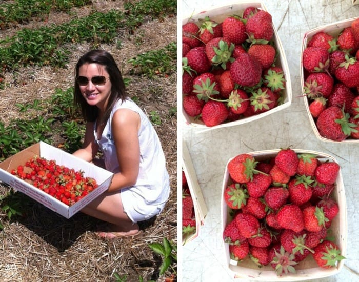 Why summer is awesome: picking and eating fresh strawberries!