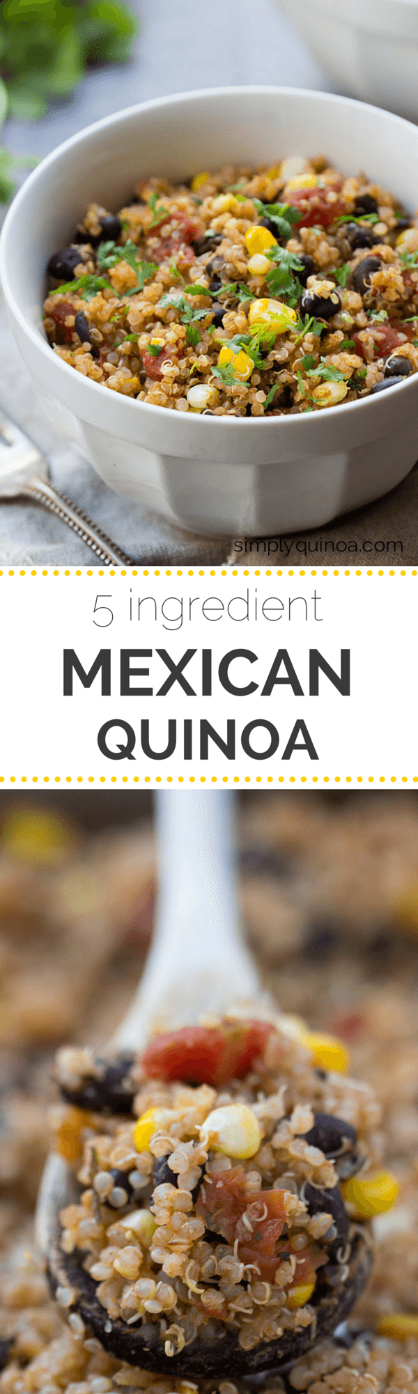 5 ingredient mexican quinoa simply quinoa easy mexican quinoa using only 5 ingredients a quick and healthy dinner everyone will forumfinder Gallery