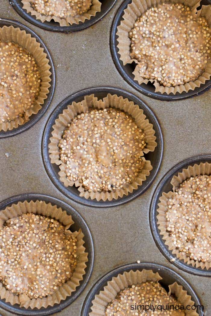 Crunchy Toasted Coconut Quinoa Bites >> only 5 ingredients, naturally sweetened and 100% gluten-free