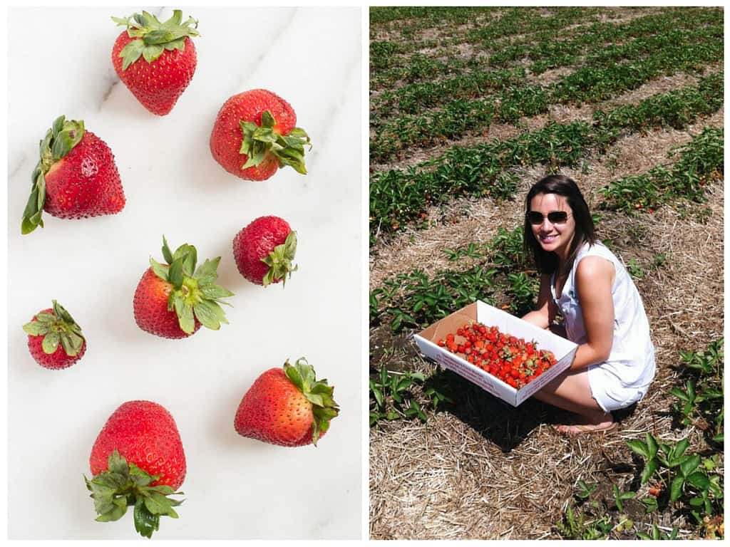 FRESH LOCAL STRAWBERRIES -- the perfect addition to these healthy quinoa breakfast bars!