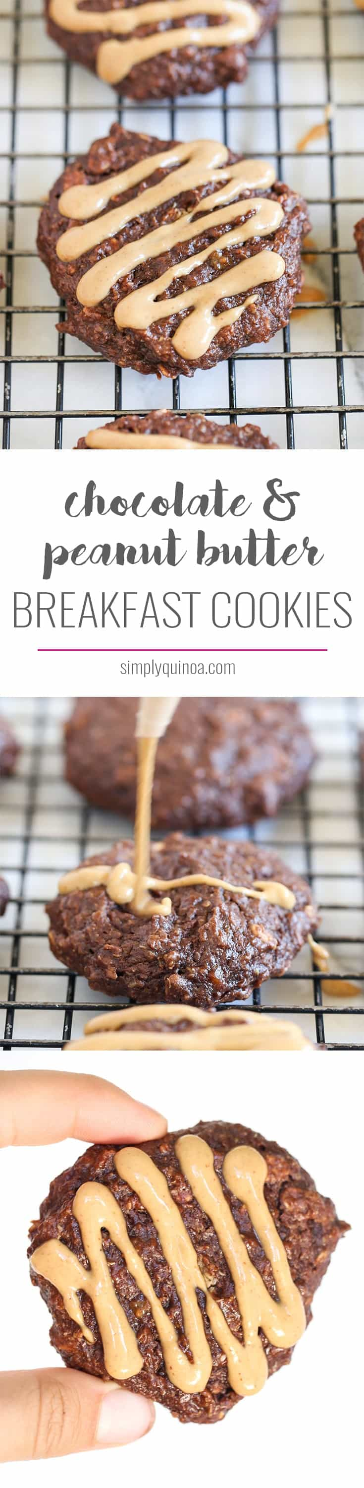 These quinoa breakfast cookies taste like dessert, but are healthy enough for breakfast! Flavored with banana, peanut butter, chocolate, oats, quinoa & more!