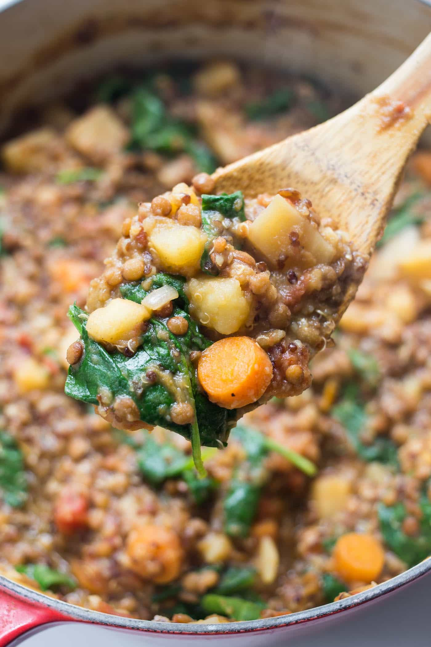 How to make the most PERFECT fall quinoa stew! Using root vegetables, lentils, tomatoes and herbs