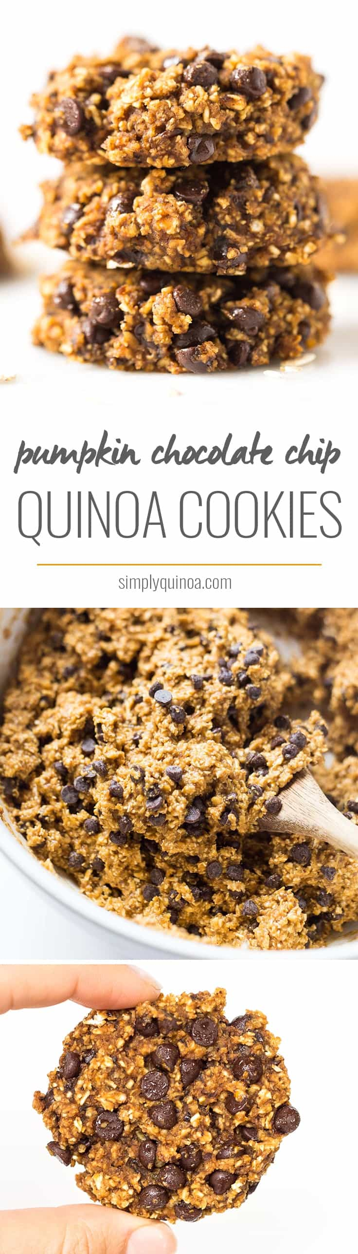 Pumpkin Chocolate Chip Cookies >> moist, tender, chewy and SUPER healthy!! NO butter, oil, gluten, dairy, eggs OR refined sugar!