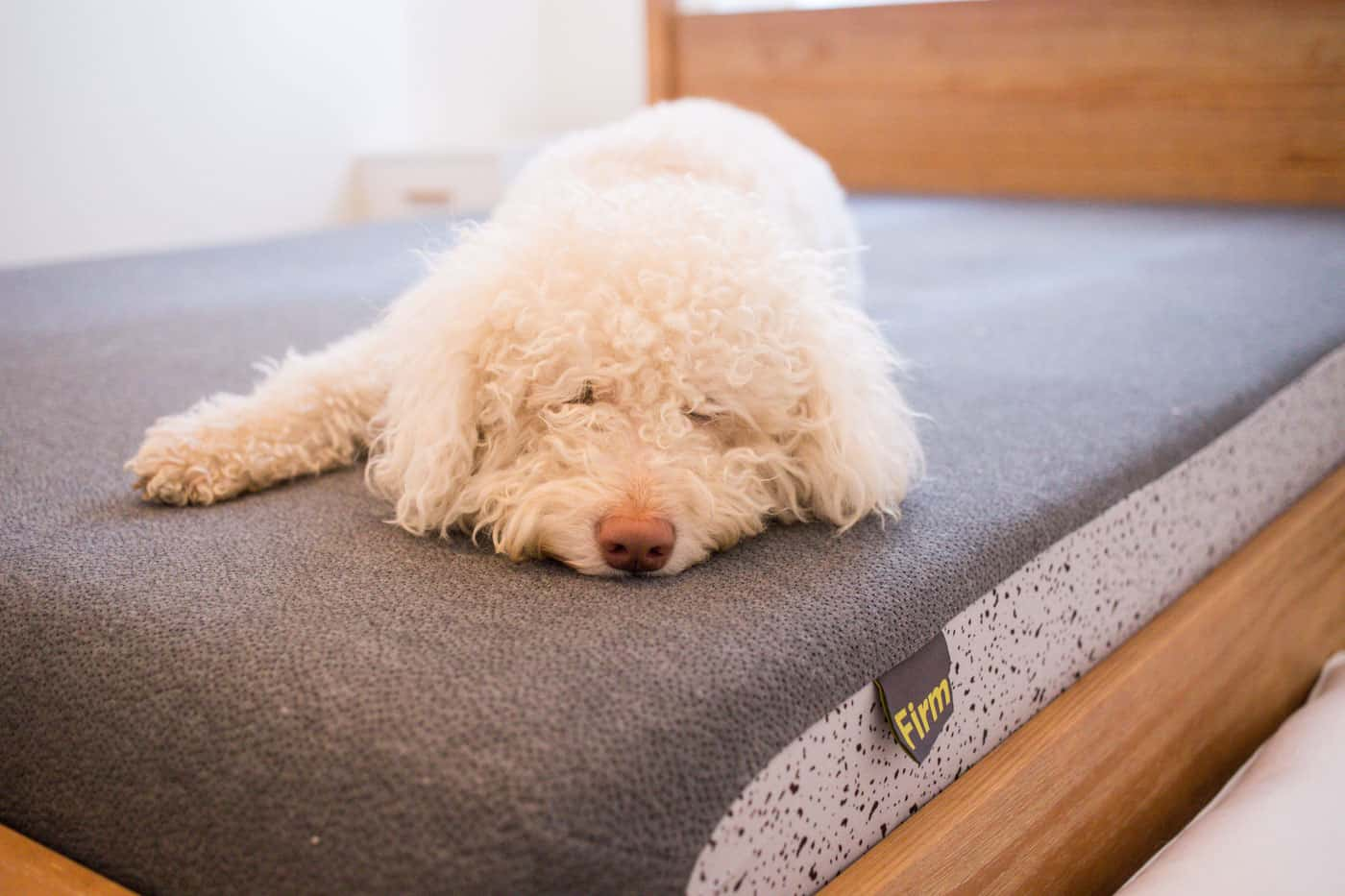 Non Toxic Mattress from OSO Sleep