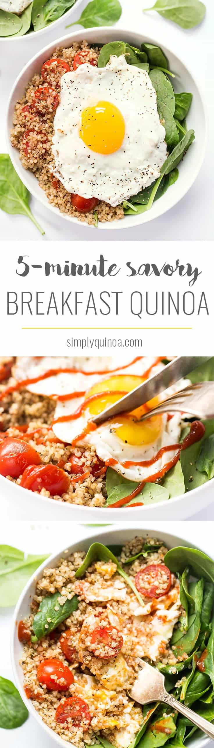 These SAVORY Quinoa Breakfast Bowls take just 5 minutes to make and are packed with healthy ingredients >> spinach, tomatoes and fried eggs make this a protein-packed breakfast!