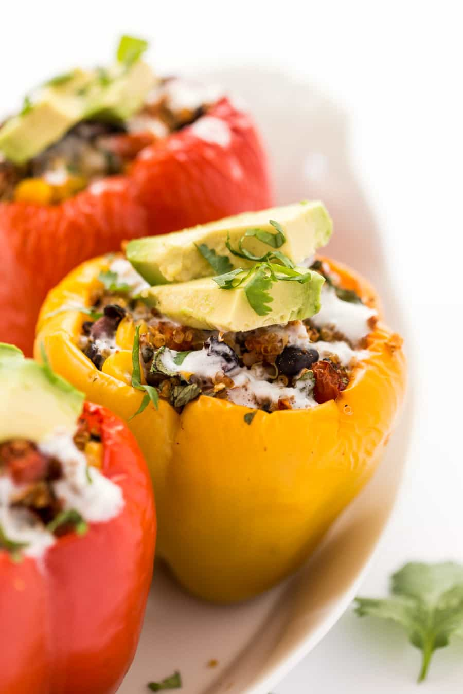 A close-up of Mexican Quinoa Stuffed Peppers. They are resting on a white plate and covered in herbs and avocado.