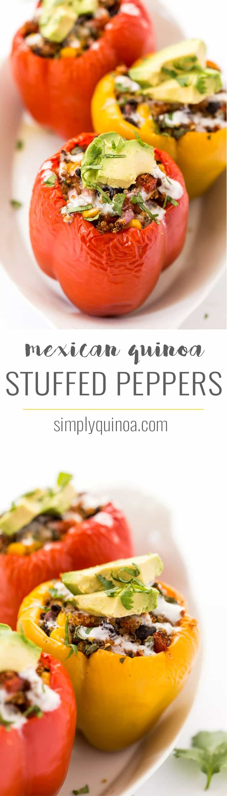 These delectable MEXICAN QUINOA STUFFED PEPPERS are a hearty, plant-based entree that is easy to make, packed with flavor and doubles as a great meal-prep option as well!