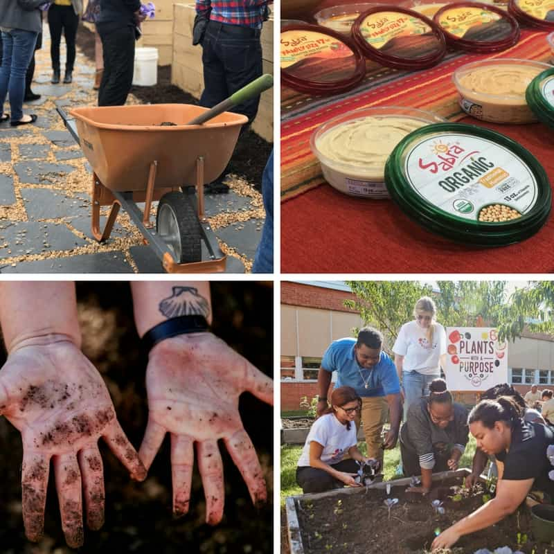 The Sabra Plants with a Purpose campaign!