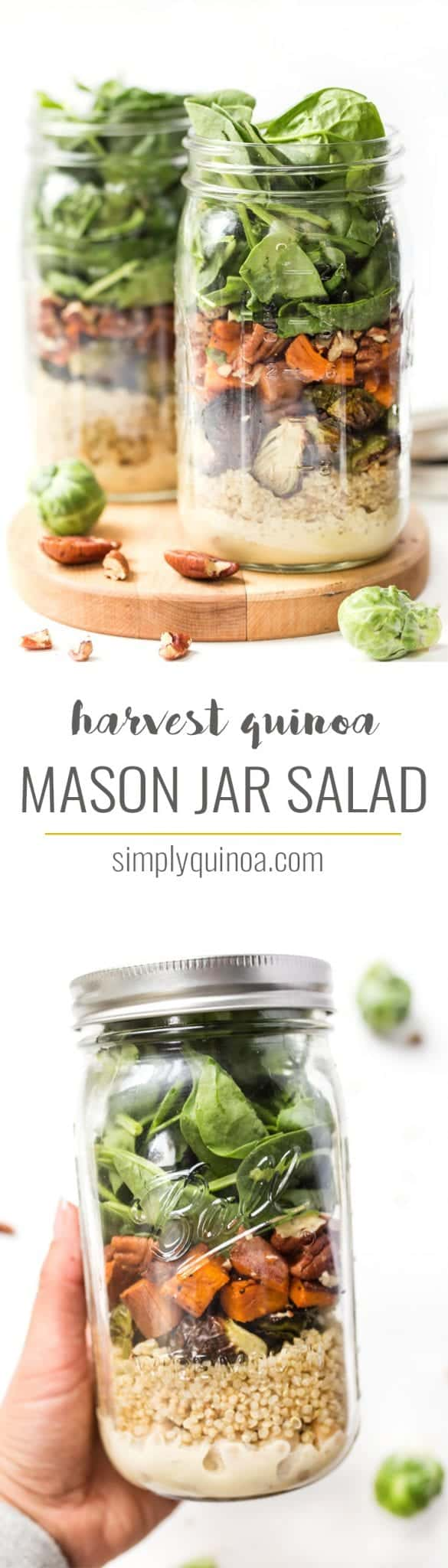 Fall Harvest MASON JAR Quinoa Salads -- perfect for meal prep, packed with protein and so simple to make!