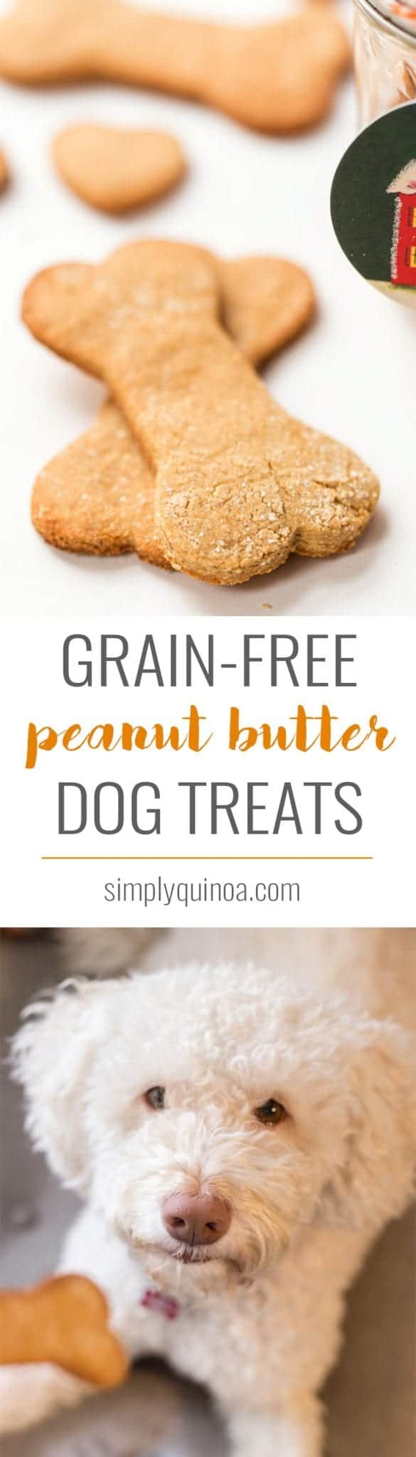Grain Free Peanut Butter Dog Treats Simply Quinoa