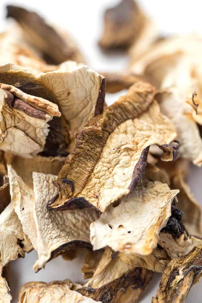 how to find porcini mushrooms