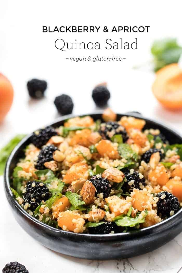Healthy Quinoa Salad with Apricots & Blackberries