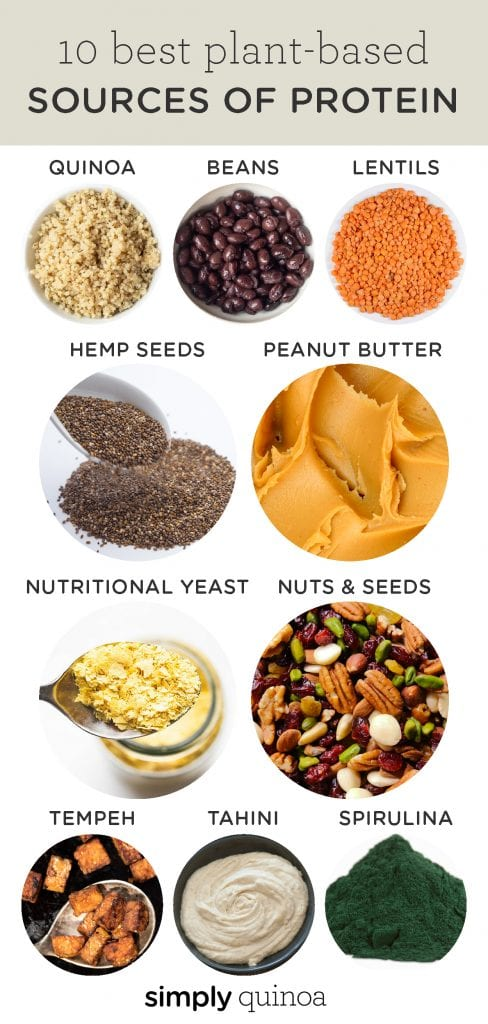 10 best sources of plant-based protein