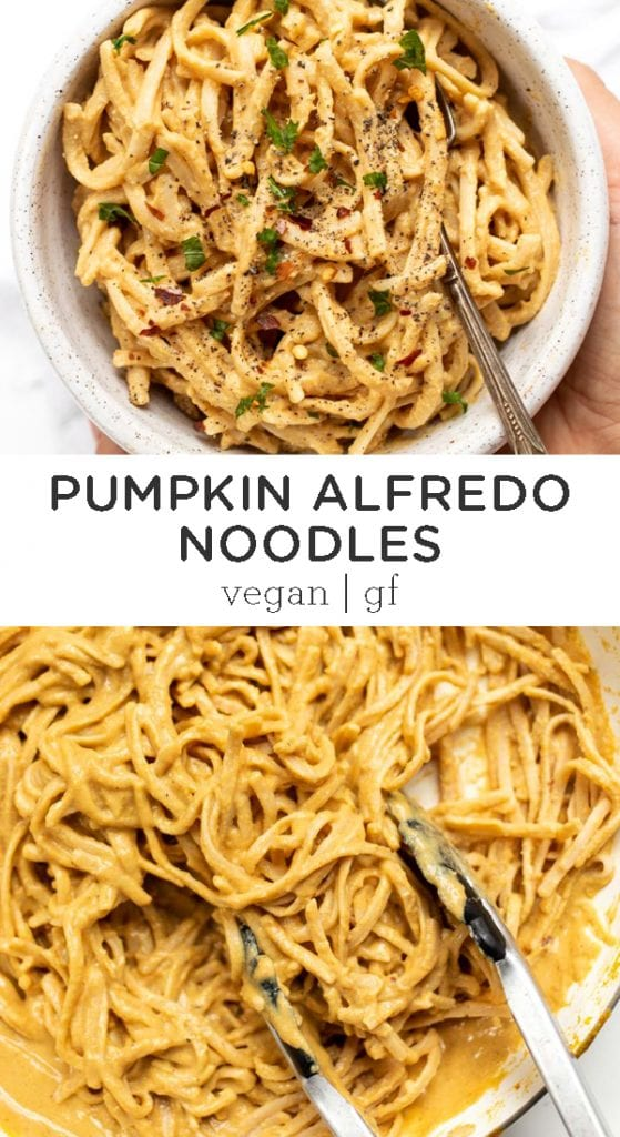 Pumpkin Alfredo Sauce with Noodles