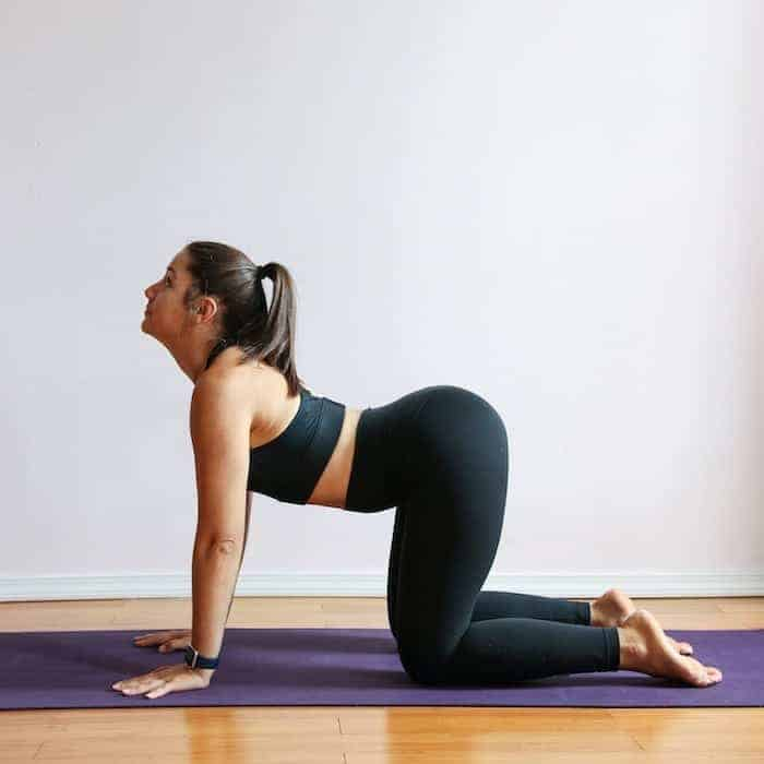 How to do Cow Pose for Lower Back Pain