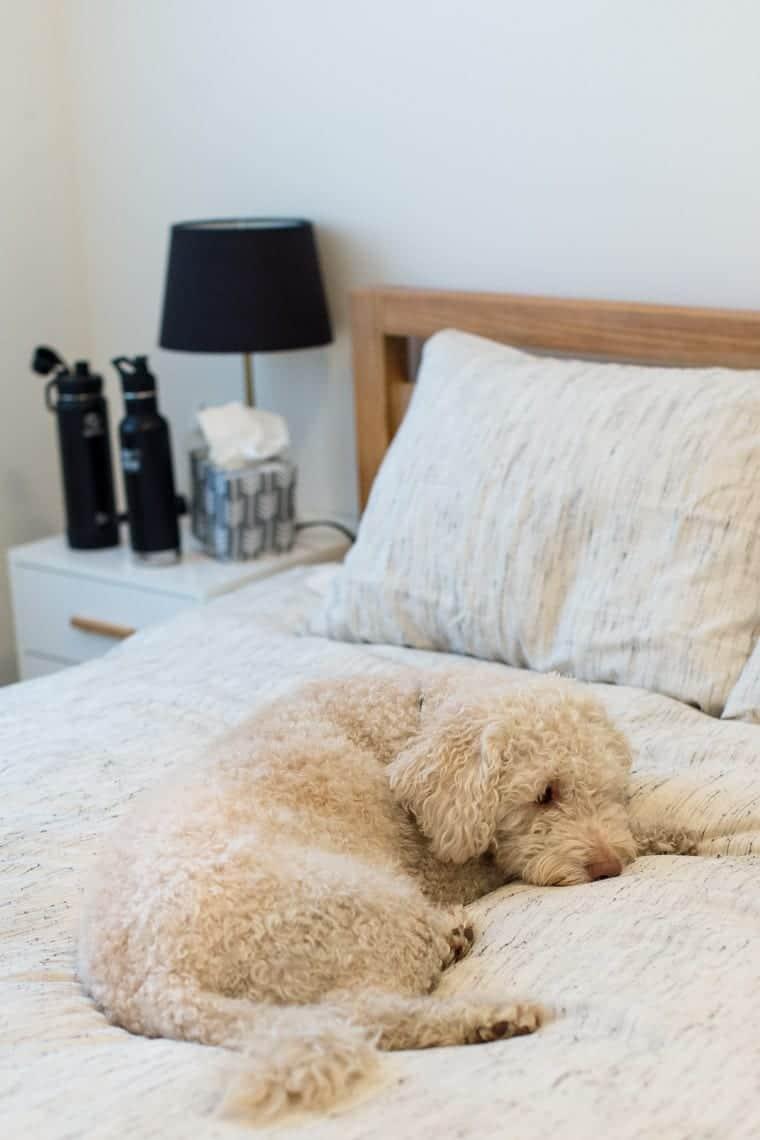 How to Detox Your Bedroom