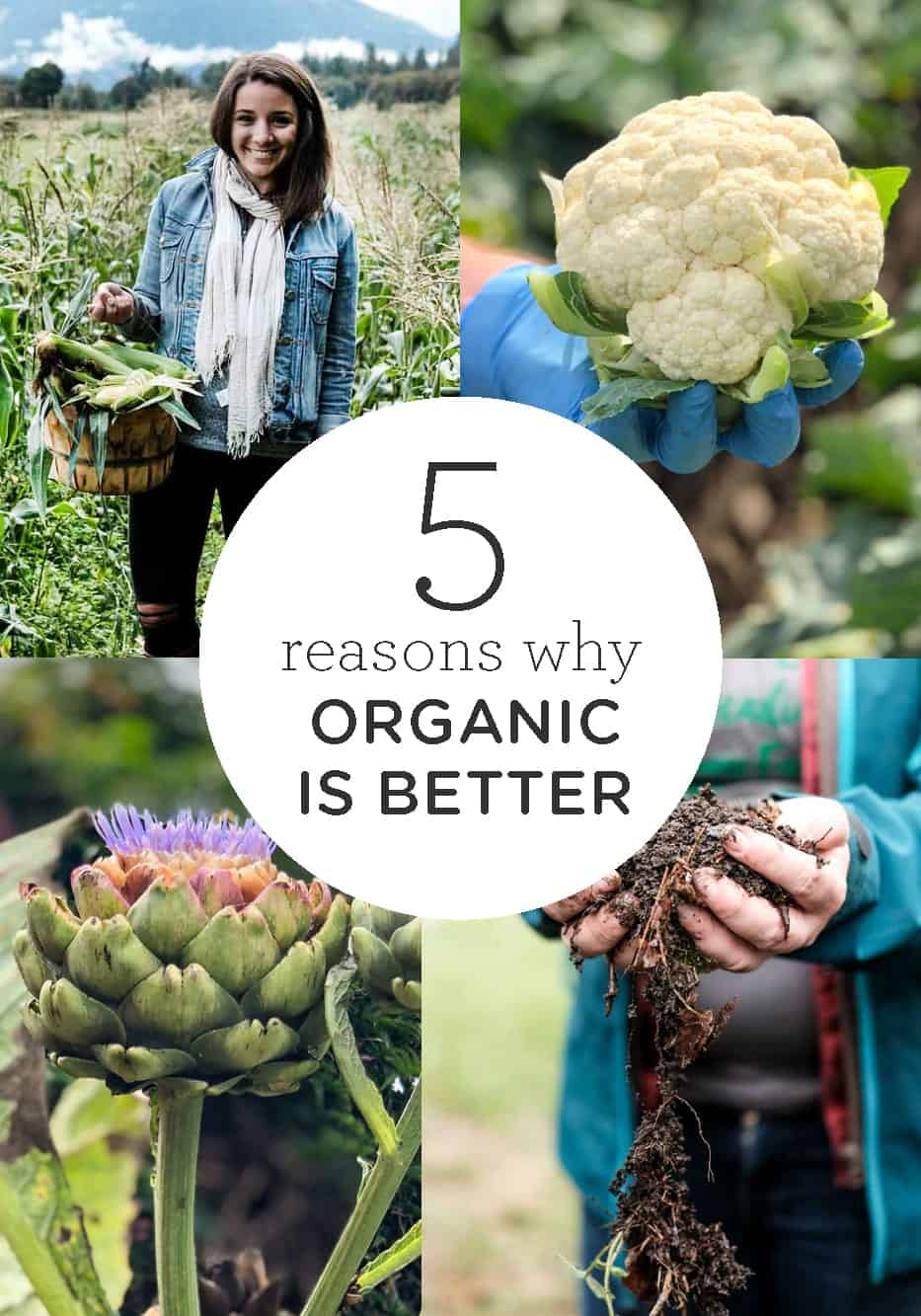 Reasons why Organic is Better