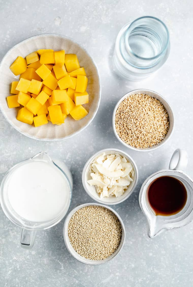 overhead of the ingredient for coconut steel cut oats with mango, vegan milk, maple syrup and water