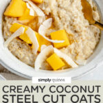 overhead of a bowl of creamy oats with mango and coconut chips on top