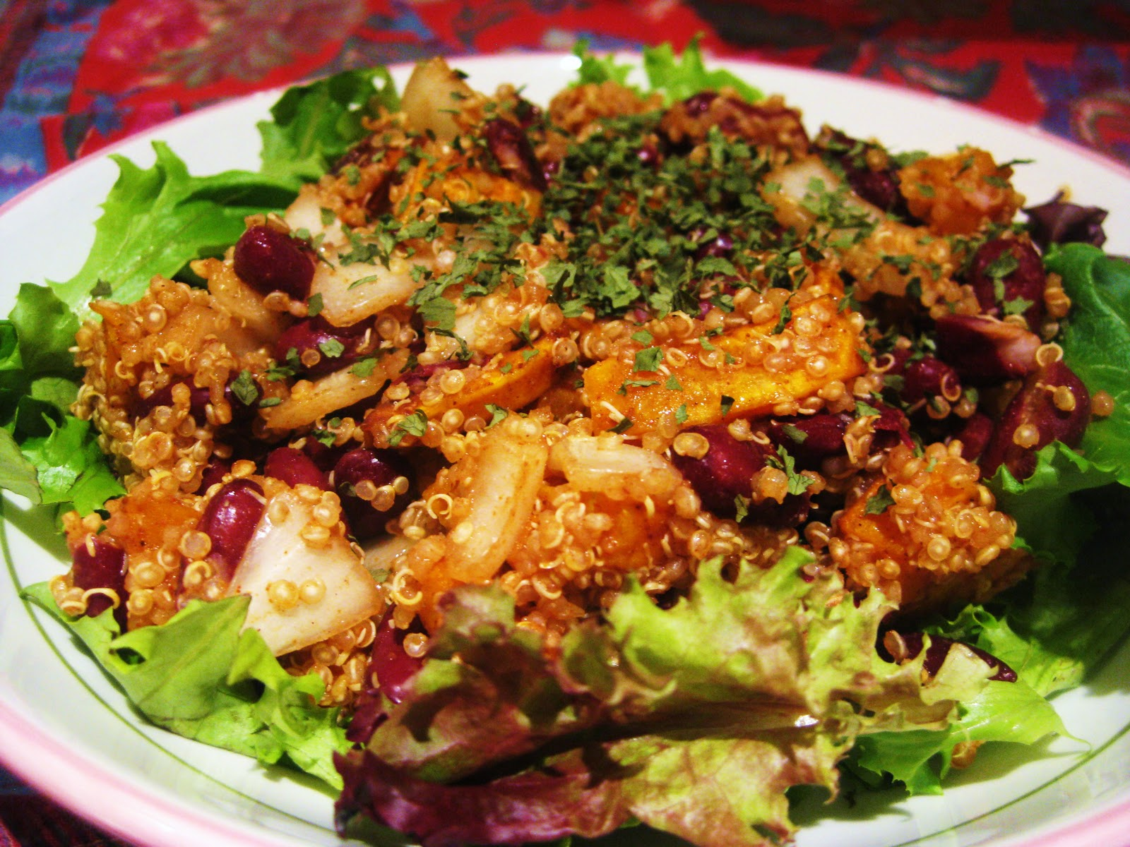 Mexican Style Red Bean Quinoa Salad